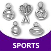pewter sports