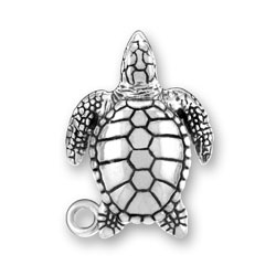 Sea Turtle Charm Image