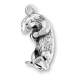 Sea Otter Charm Image