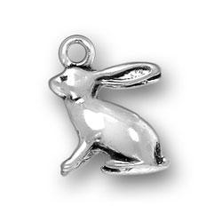 Rabbit Charm Image
