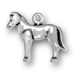 Pony Charm Image
