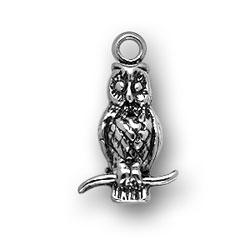 Owl Charm Image