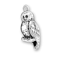 Spotted Owl Charm Image