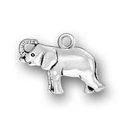 Asian Elephant Charm Image
