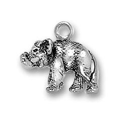 Indian Elephant Charm Image