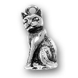 Large Cat Charm Image