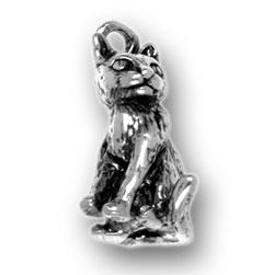 Cat Charm Image
