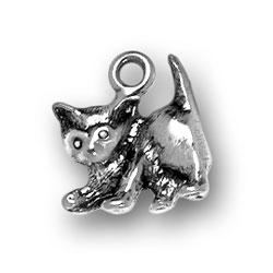 Playful Kitten Charm Image