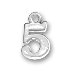 Number 5 Charm Image