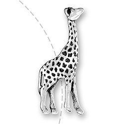 Giraffe Bead Image