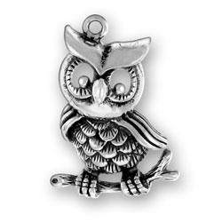 Large Owl Charm Image