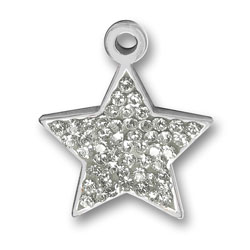 Pewter Crystal Star Charm Image