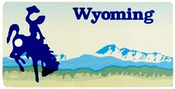 Custom Engraved Wyoming Key Tag Image