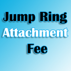Jump Ring Fee For Engraved Tags Image
